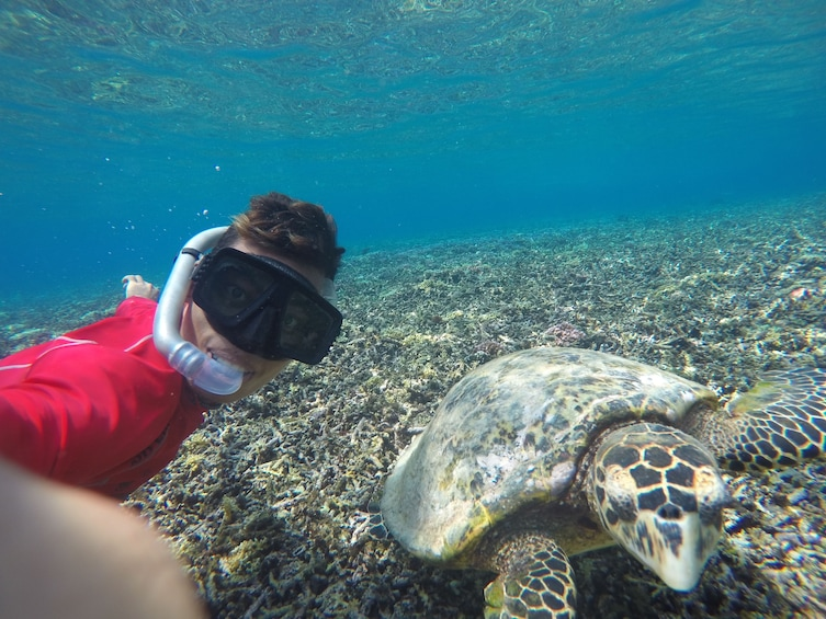 Show item 5 of 5. 3 Gili Snorkeling Tour ( 3 Island Visit in A Day )