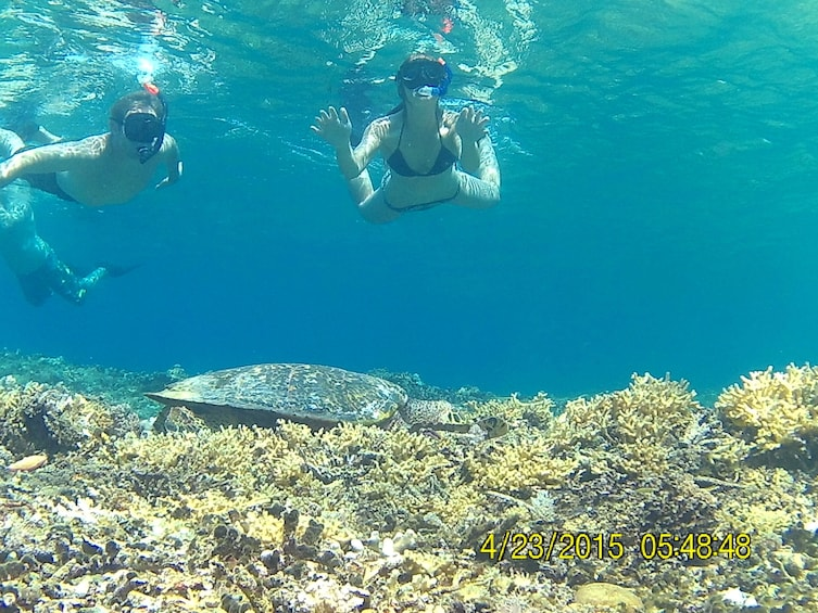 Show item 3 of 5. 3 Gili Snorkeling Tour ( 3 Island Visit in A Day )