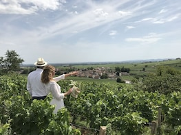Small-Group Day from Beaune including Wine Tastings & Lunch