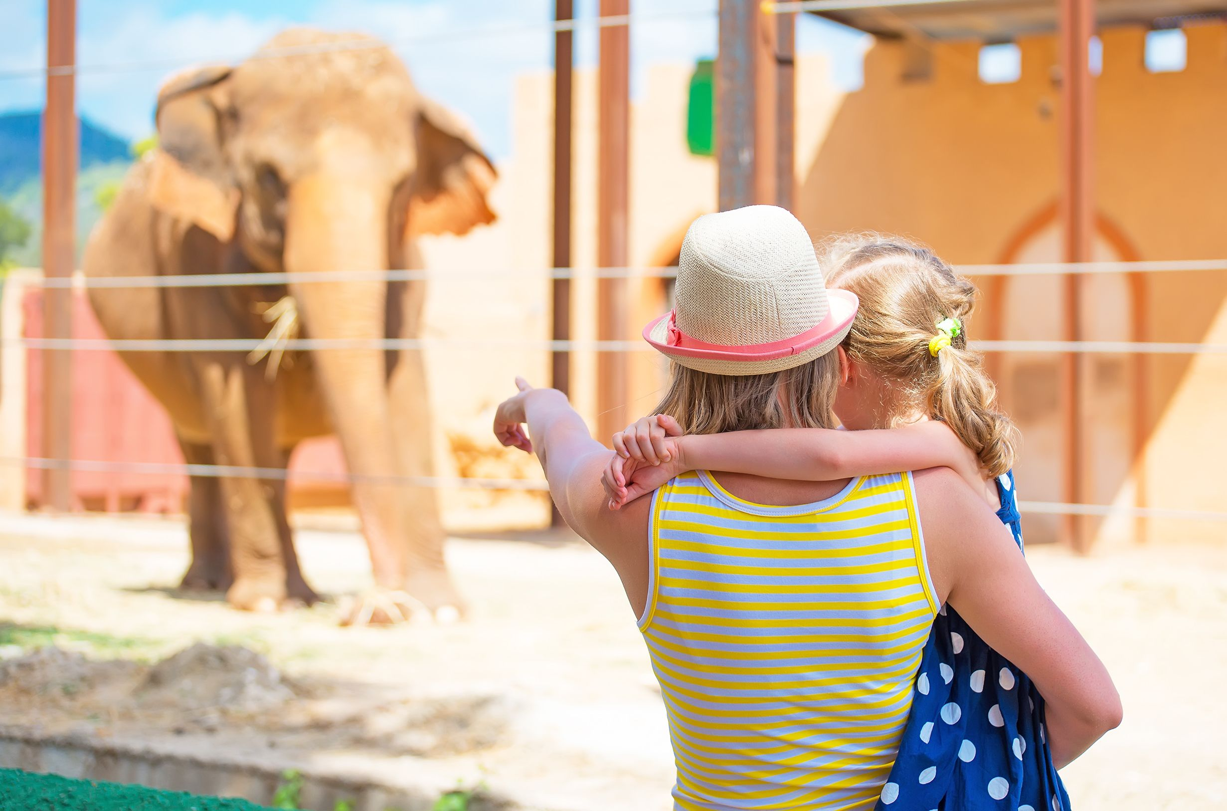 Full-Day Tour Athens Attica Zoo and Shopping Combo