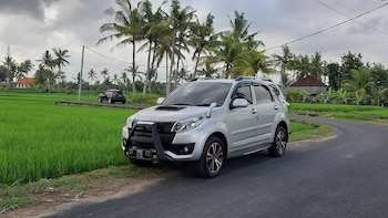Private Tour: Explore Ubud with Local Expert Driver-Guide