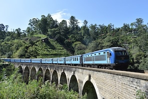 Wild Safari, Pigeon Island. Scenic Train-12 Day Private Tour
