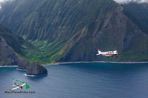 Molokai's Magic: Sea Cliffs *Private* Discovery Flight for 3