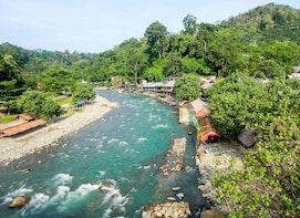 Medan Private Jungle Trekking and Wildlife Tour