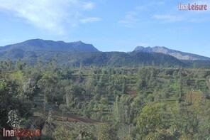 FD Malino Countryside Excursion