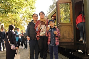 Private day trip to Mokra Gora and Sargan Eight train