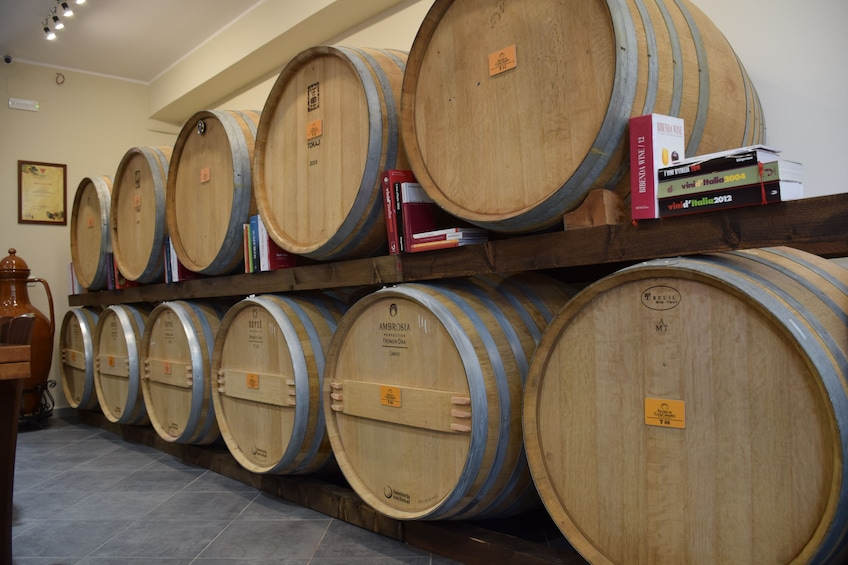 Barrels of wine at a winery in Guagnano