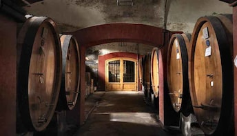 Meet the king of the reds on a Brunello wine tour