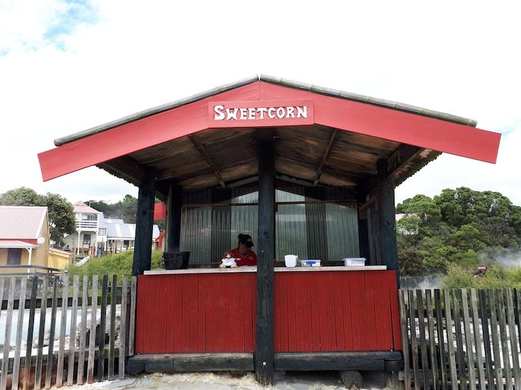 Rotorua Cultural and Rejuvenation Tour