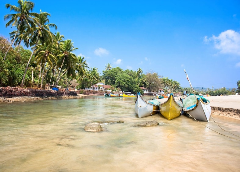 One Day Private Tour of North Goa