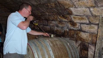 Half-day Countryside Wine Tour near Budapest with Meal