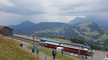 Mount Rigi round tour & lake boat cruise from Basel