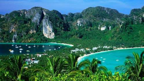 Snorkeling Tour to Phi Phi Islands From Krabi