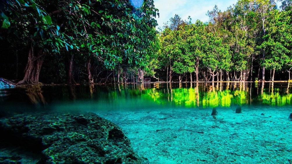Show item 3 of 7. Jungle Tour to Emerald pool, Krabi Hot Spring waterfall