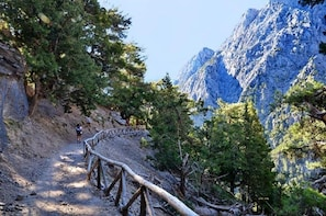 Samaria Gorge from Chania(Private Tour)