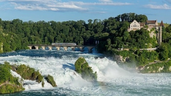 Rhine Falls & Boat Tour to the Rock Private Tour from Zürich