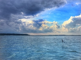 Hilton Head Island Stand Up Paddleboard Tour