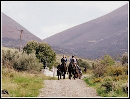 Horse Riding Excursions from Kalamata