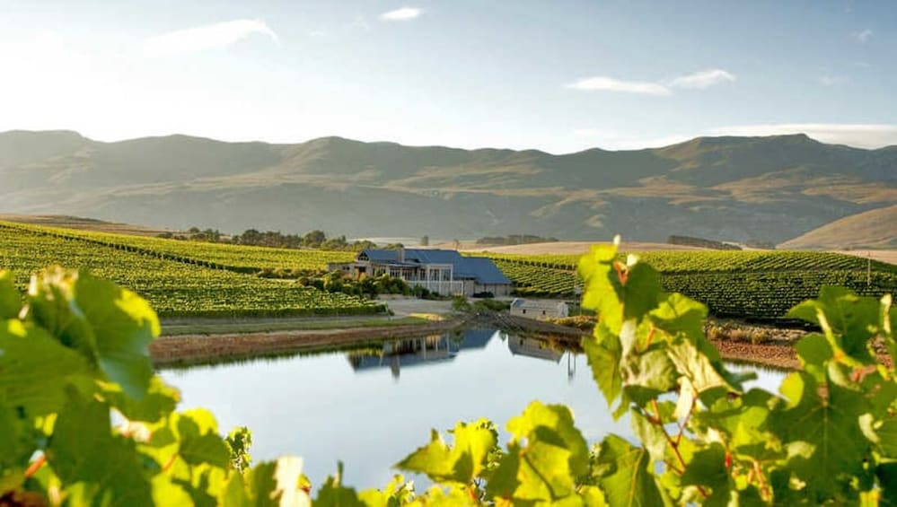 Show item 4 of 5. Cape Agulhas & Winelands full day tours