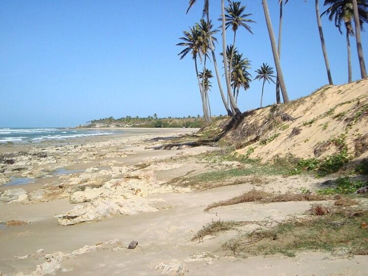Show item 5 of 9. Tour To Lagoinha Beach