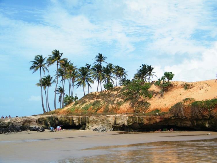 Show item 2 of 9. Tour To Lagoinha Beach