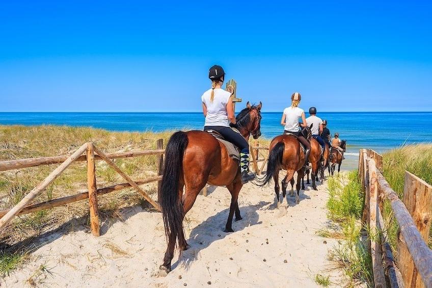 Horse Riding – Morning Ride in Paros