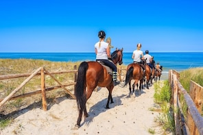 Horse Riding – Morning Ride in Paros