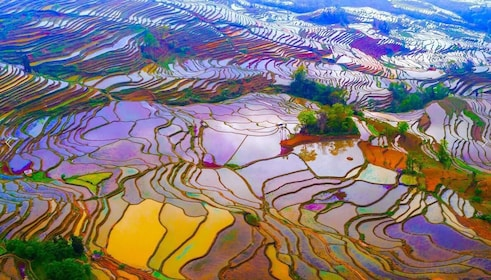 Yuanyang Rice Terraces B.jpg