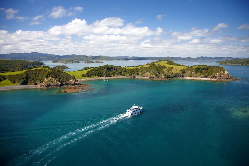 Show item 3 of 5. Cruise ship approaches islands in New Zealand