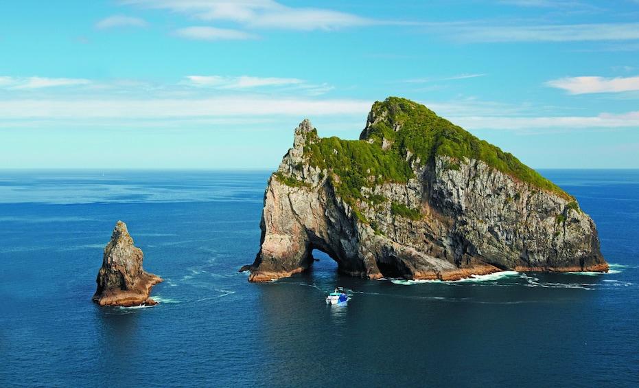 Show item 1 of 5. Motukokako Island in New Zealand