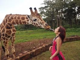 Full day Nairobi National Park,Baby Elephant&Girraffe centre
