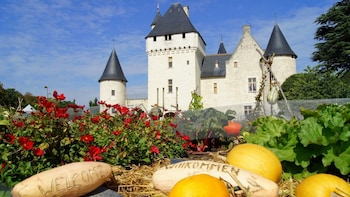 Beautiful Loire Valley: Villandry, Azay le Rideau & Rivau
