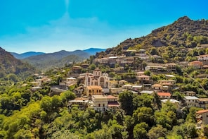 Treasures of Troodos from Protaras, Aya Napa & Larnaca