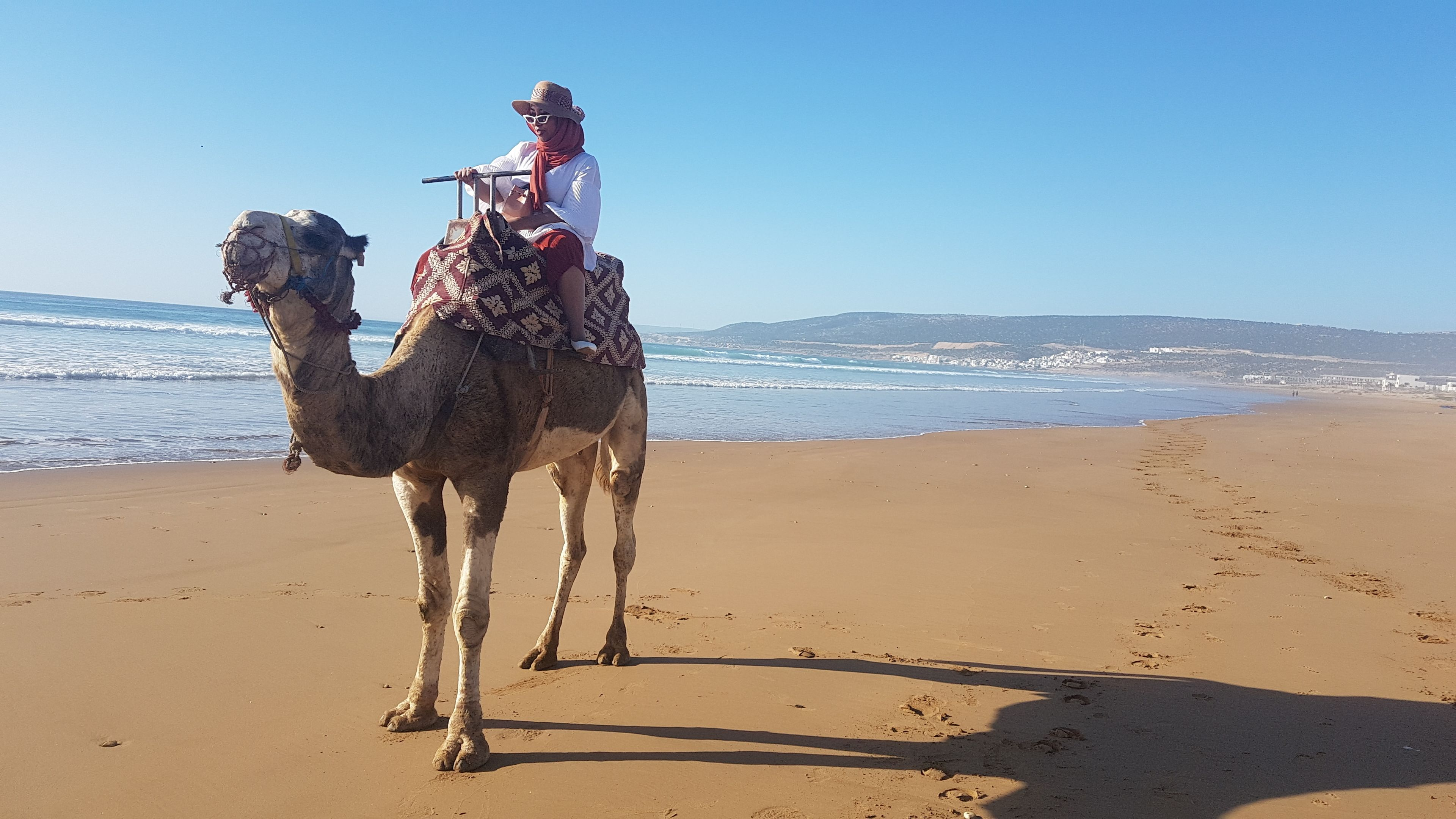 Sunset Camel Ride By The Beach