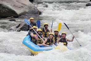 White water rafting and Quad bike tours