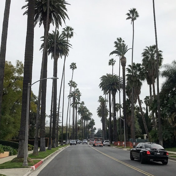 Show item 10 of 10. 2-Hour Custom Private Tour of Beverly Hills and Hollywood