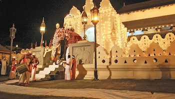 Kandy: One-Day Tour From Negombo or Marawila