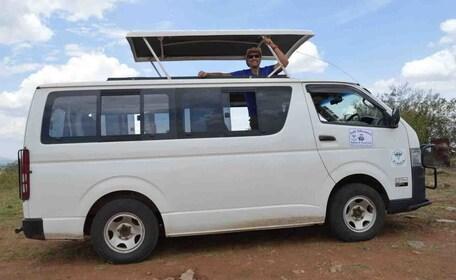 safari-van.jpg