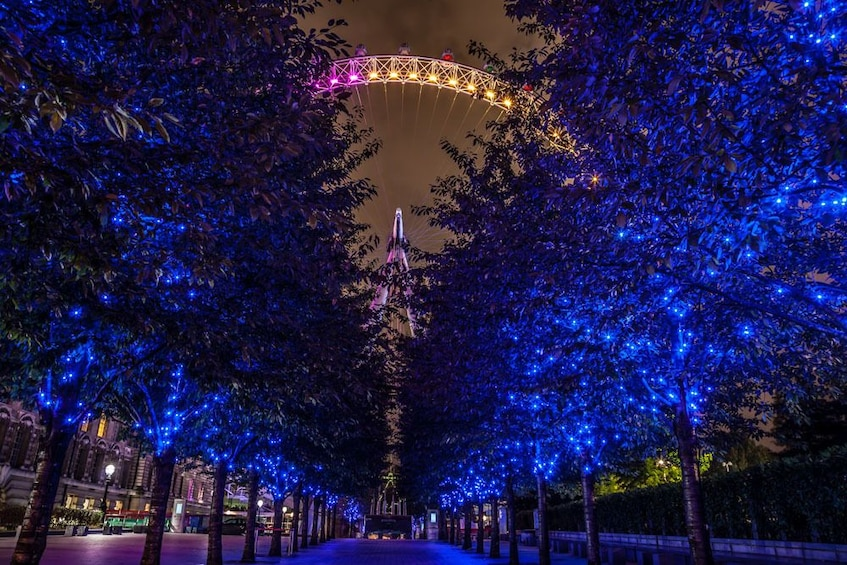 Show item 3 of 5. Private Night Photography Tour - South Bank & Westminster