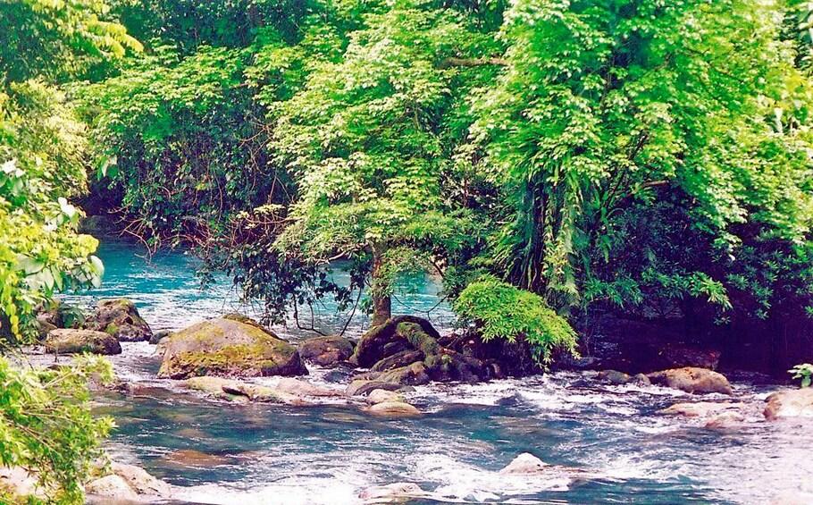 Show item 5 of 5. River in Vietnam