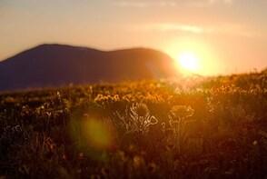 Sunrise/sunset tours