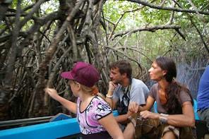 Saffari Excursion to Madu River From Galle