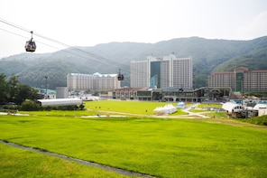 Eden Valley Luge and Miryang Alps Cable Car One day Tour