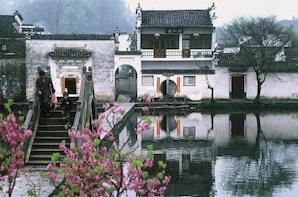 Half-Day Hongcun Village Discovery Group Tour