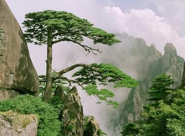Mount Huangshan E.jpg