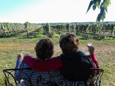 Luxury Toronto to Niagara Wine Tour: Flight & Limo Package