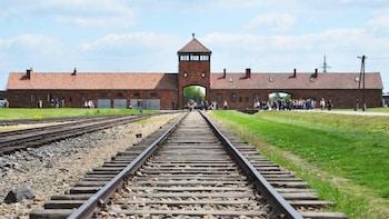 Auschwitz-Birkenau Full-Day Guided Tour from Warsaw