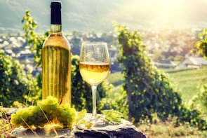 Alsace Half-Day Wine Tour From Colmar