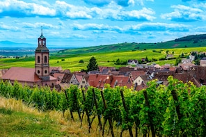 Gems Of Alsace Full-Day Tour From Colmar