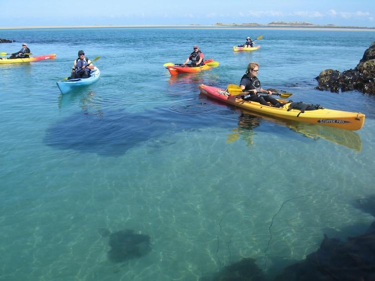 Show item 1 of 1. Kayak Hire